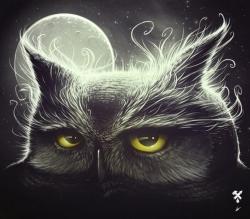 Owl & the moon