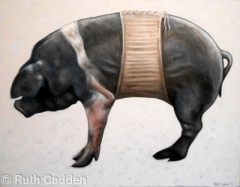 Pig in a Corset