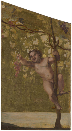 Putto gathering Grapes