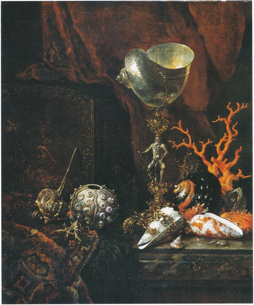 Still life with shell cup, shells, coral and lacquer box