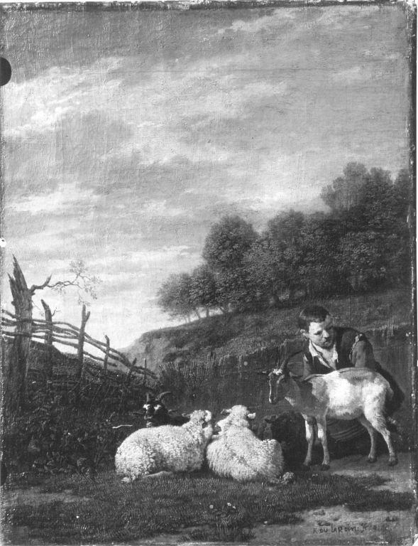 Young shepherd with his flock