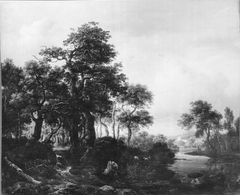 A wooded river landscape with a low waterfall