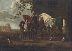 Boy Holding Three Horses
