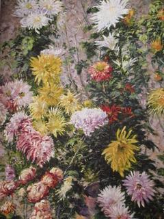 Chrysanthèmes blancs et jaunes. Jardin du Petit Gennevilliers