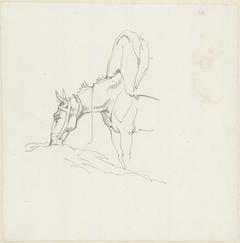 Een etend lastpaard