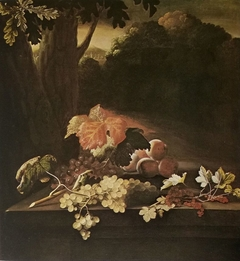 Fruit on a stone table in front of a wooded hilly landscape
