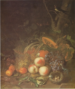Fruit still life with a bird's nest and lizard
