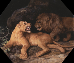 Lion and Lione