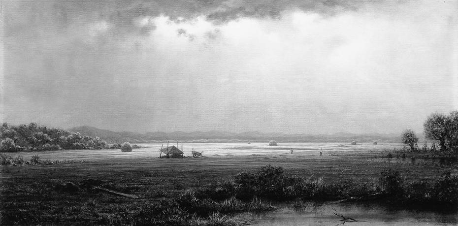 Newburyport Marshes