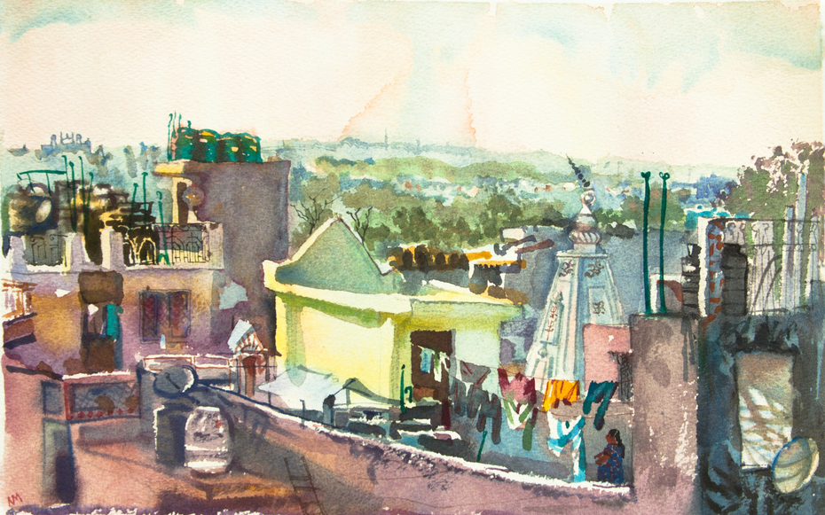 Roofs of Delhi, India.