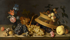 Still Life of Flowers, Fruit, Shells, and Insects