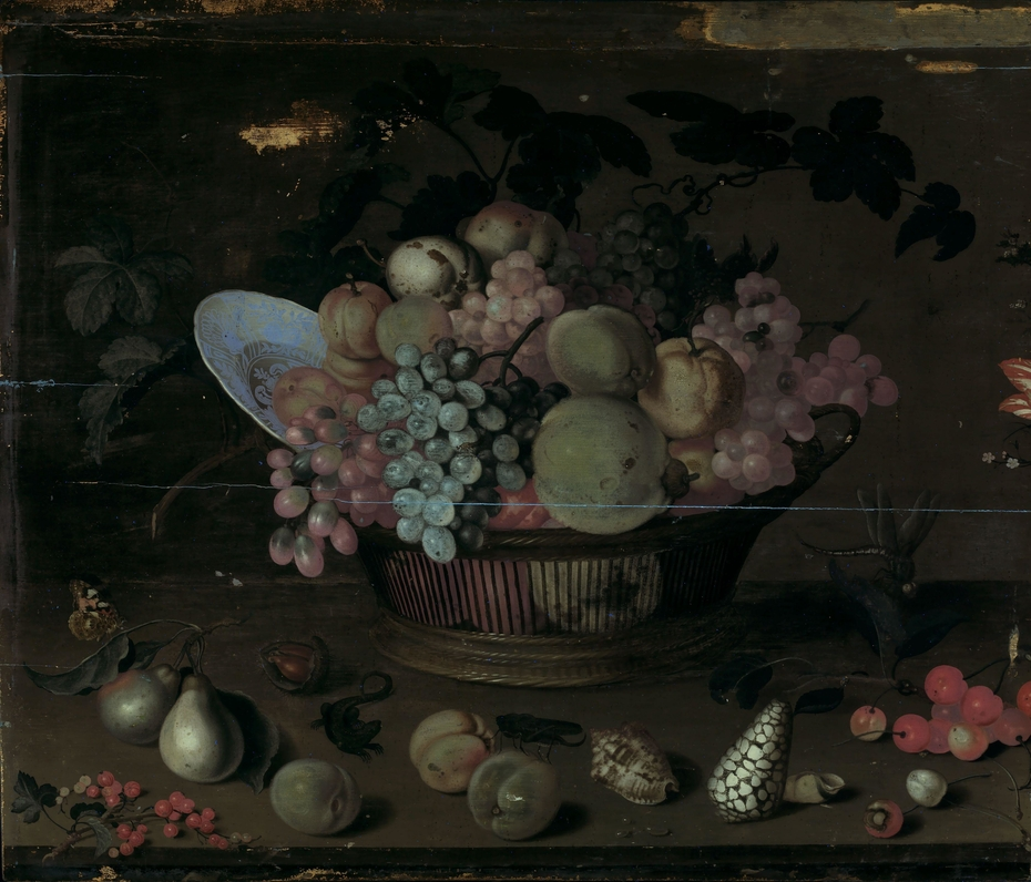 Still life with fruit and shells