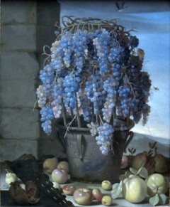 Still Life with Grapes and other Fruit
