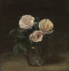 Still Life with Rose
