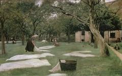The Bleaching Ground