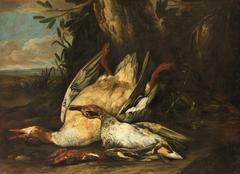 Tote Wildenten