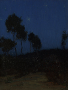 Untitled (Nocturnal Landscape)