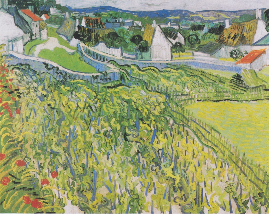 Vineyards overlooking Auvers
