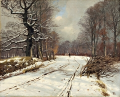 Winter landscape of forests near Hillerød