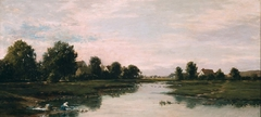 Woman Washing Clothes at the Edge of a River