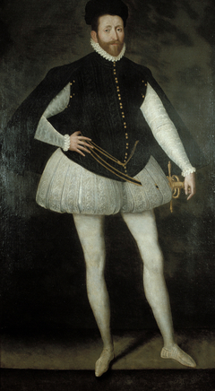 A Nobleman of the Valois Court
