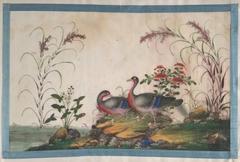 Album Containing Twelve Paintings of Birds