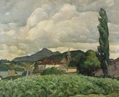 Basque Landscape