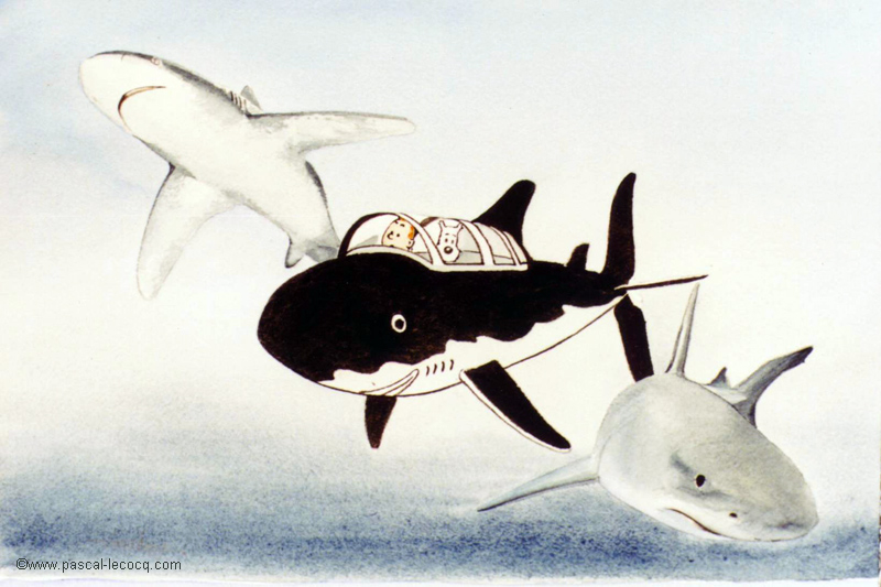 CHIEN ET SHARKS - Dog and sharks - by Pascal