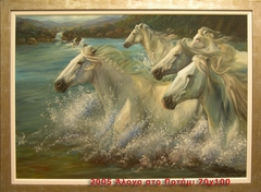 Horses in the river!