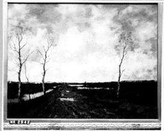 Moeraslandschap met modderige weg