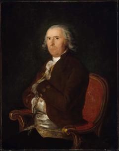 Portrait of a Man in a Brown Coat