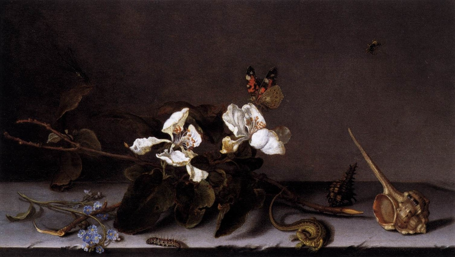 Still Life with Apple Blossoms