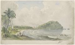 Tropisch kustlandschap
