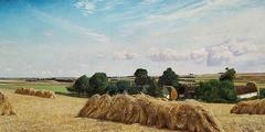 En Mark med Kornet sat op i Traver