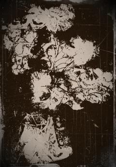 untitled1