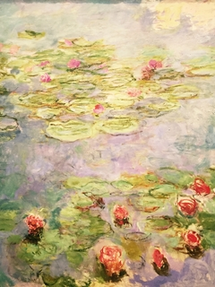 Water lilies (red)