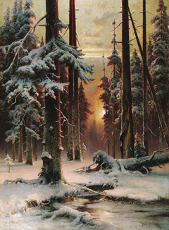 Winter Sunset in a Spruce Forest