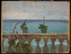 Balcony with flower pots