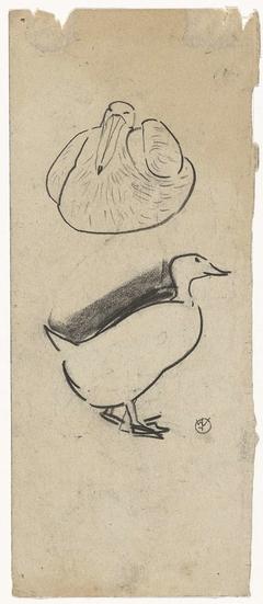 Eend en een zittende vogel