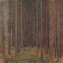 Forêt de sapins I