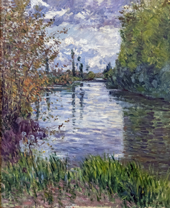 Le Petit bras de la Seine en automne
