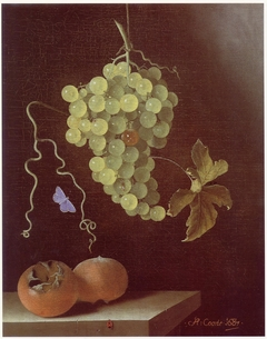 Still life with hanging bunch of grapes, two medlars and a butterfly