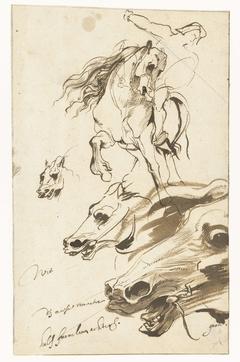 Studies van een ruiter en het hoofd van een paard
