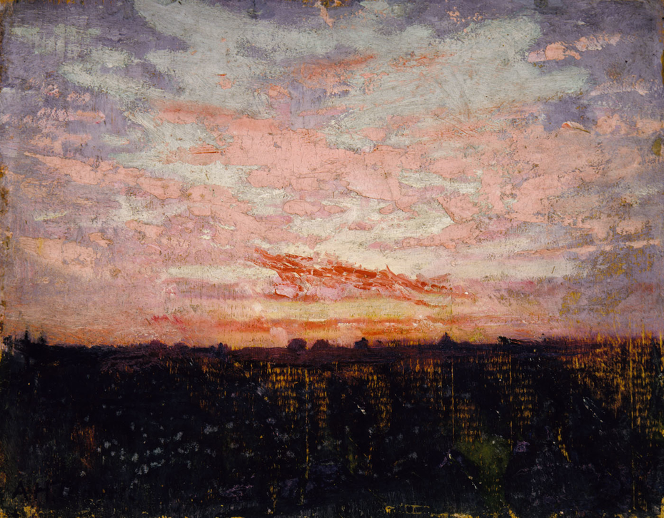 Sunrise or Sunset, study for book, Concealing Coloration in the Animal Kingdom