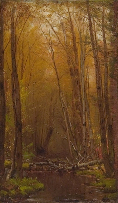 The Birches of the Catskills