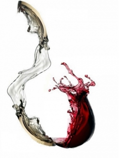 The wine's transition