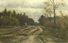 Country Road near Laren, (Province of North Holland)