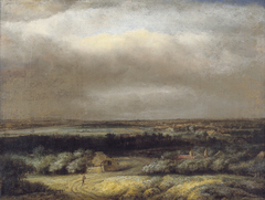 Extensive landscape with traveller