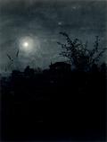 Moonlight Scene, Houses in Background