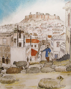 Kolonaki Shepherd - Βοσκός Κολωνακιώτης